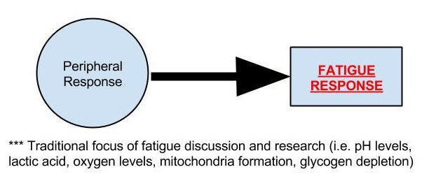 Peripheral Governor - Fatigue